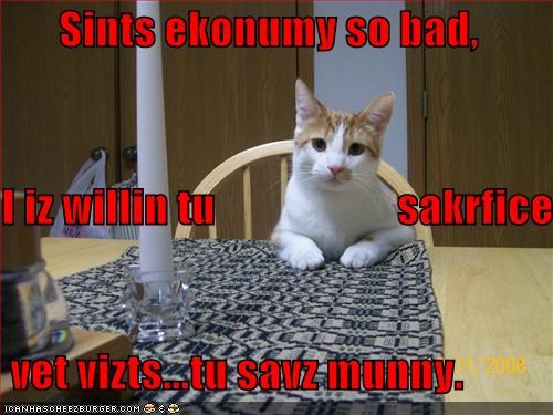 economy helpful lolcats money sacrifice vet - 1457512192