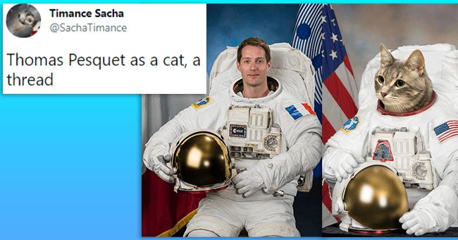 "15 tweets comparing pesquet to cat | thumbnail tweet ""thomas pesquet as a cat, a thread"" next two picture of pesquet in space gear and cat in space gear"