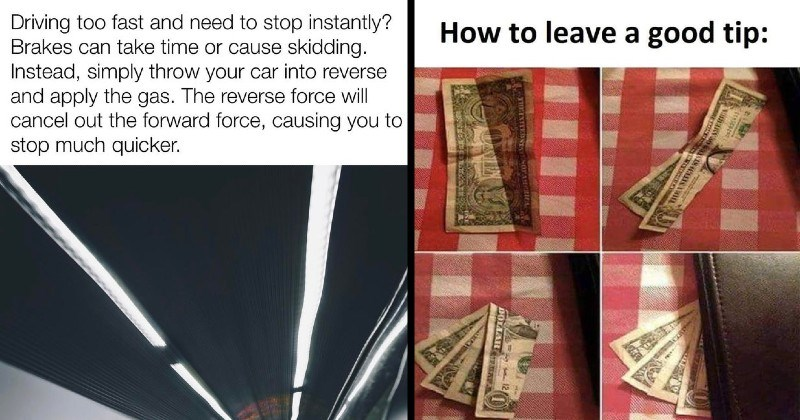 ridiculous and stupid life pro tips