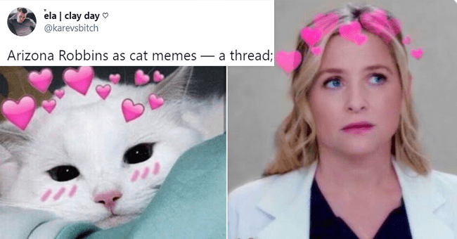 "12 tweets comparing arizona robbins to cat | thumbnail picture of arizona and cat meme, tweet text ""arizona robbins as cat memes; a thread"""