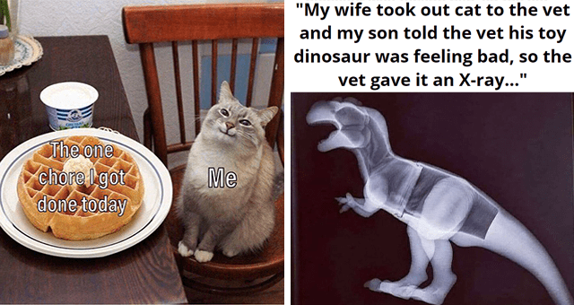 collection of wholesome animal memes | thumbnail includes two memes including a smiling cat next to pancakes 'Cat - CHE TANA The one chore l got done today Me' and an x-ray of a toy dinosaur 'Dog - My wife took our cat to the vet and my son told the vet his toy dinosaur was feeling bad, so the vet gave it an X-ray...'
