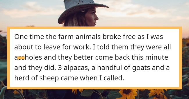 Ladies Throw Out Their Most Satisfying 'I'm A Badass' Moments| thumbnail text - tkxb · 11h One time the farm animals broke free as I was about to leave for work. I told them they were all assholes and they better come back this minute and they did. 3 alpacas, a handful of goats and a herd of sheep came when I called. Vote Reply Share •..