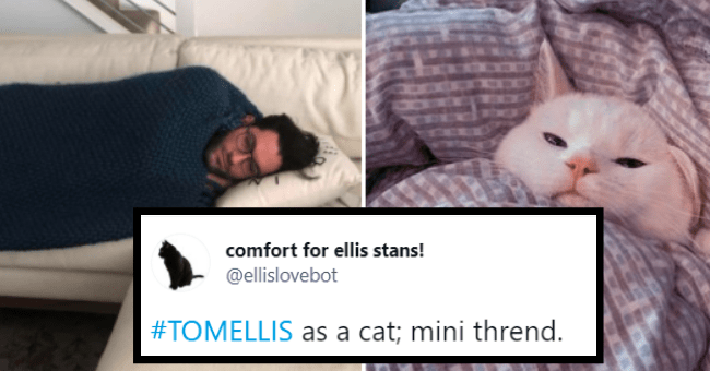 tom ellis as a cat   thumbnail text - comfort for ellis stans! @ellislovebot #TOMELLIS as a cat; mini thrend. 10:28 PM · Jun 15, 2021 · Twitter for Android