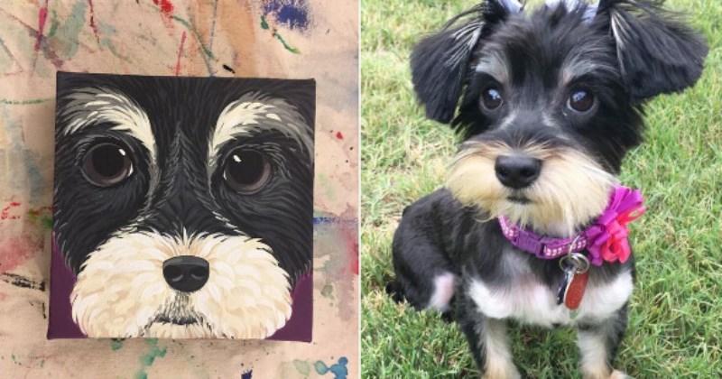 art,pets,list,funny