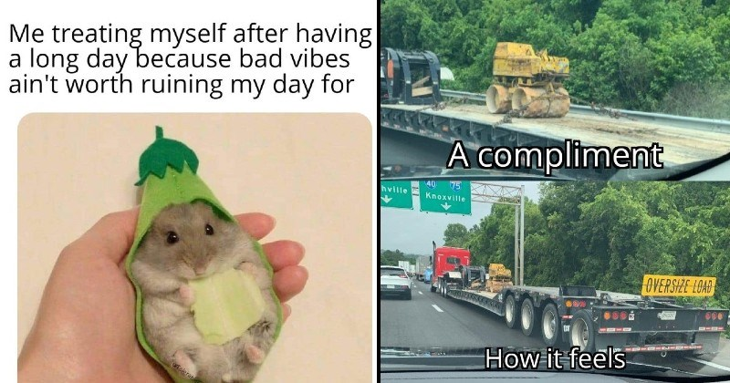 nice wholesome memes