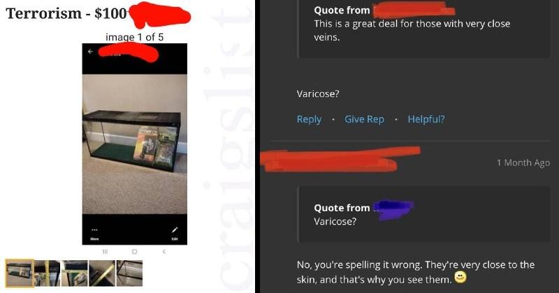 dumb spelling failures