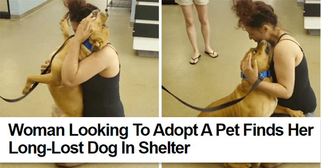 10 images and video of dog reunion news story | thumbnail woman and dog hugging twice with text title