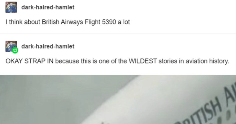 A crazy Tumblr post about how a pilot ends up surviving an absolutely catastrophic malfunction on a plane.