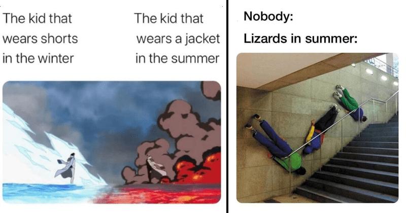 summer, sun, sunny, seasons, bugs, sea, beach, mosquitos, global warming, funny, funny memes