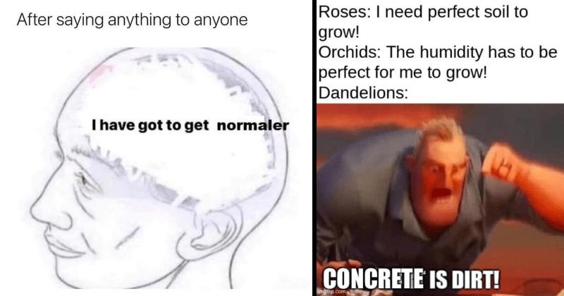 funny memes, funny, random, meme dump, random memes, dank memes, lol