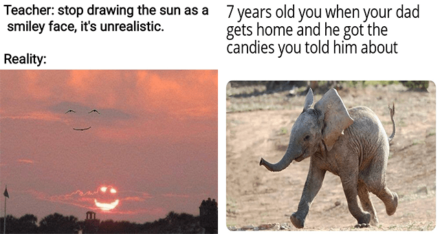 collection of wholesome animal memes | thumbnail includes two memes including a sky with a smiling sun and birds 'Cloud - Teacher: stop drawing the sun as a smiley face, it's unrealistic. Reality:' and a baby elephant mid-jump 'Elephant - 7 years old you when your dad gets home and he got the candies you told him about'