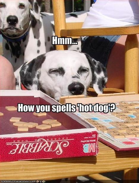 game hotdog nom nom nom spelling