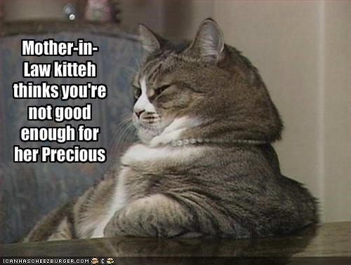 lolcats momcat mother in law Precious smug - 1472044800