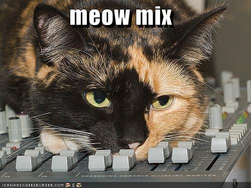 dj lolcats meow mix Music - 1472709888