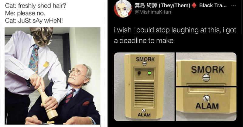 Funny random memes and tweets lol dank memes