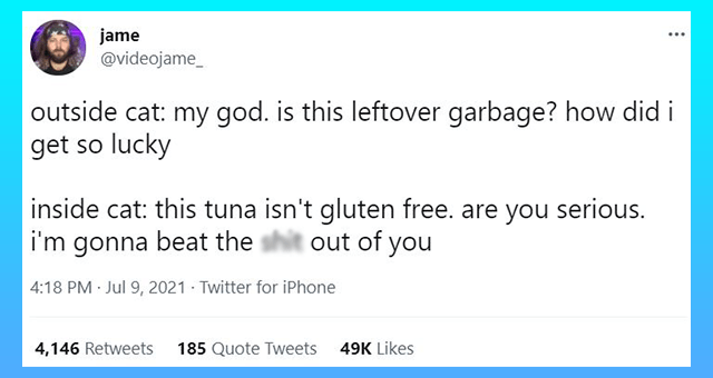 This week's collection of cat tweets | thumbnail includes one tweet 'Font - jame @videojame_ outside cat: my god. is this leftover garbage? how did i get so lucky inside cat: this tuna isn't gluten free. are you serious. i'm gonna beat the shit out of you 4:18 PM · Jul 9, 2021 - Twitter for iPhone 4,146 Retweets 185 Quote Tweets 49K Likes'