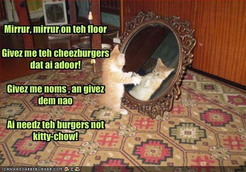 Cheezburger Image 1476424960