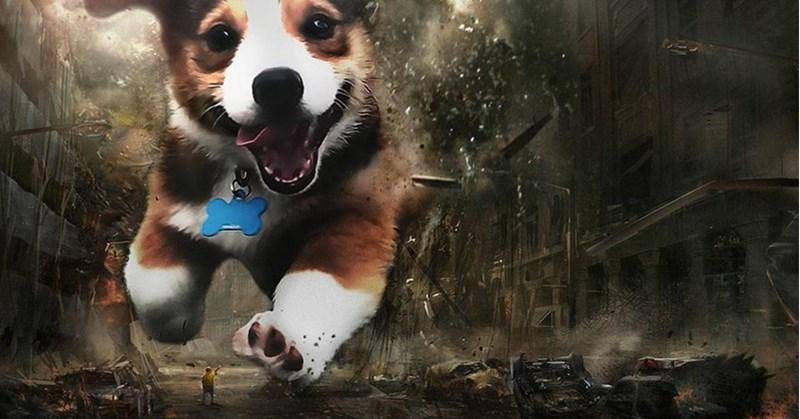 photoshop battle puppy