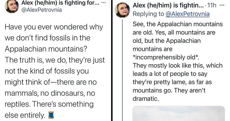 Twitter thread about the fossils found in Appalachian mountains, which are older than vertebrate animals