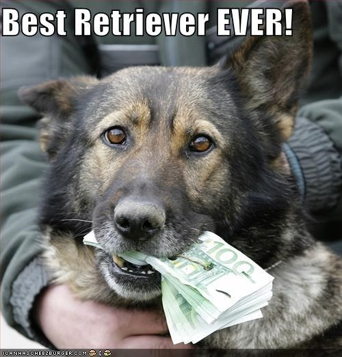german shepherd,mans-best-friend,mixed breed,money