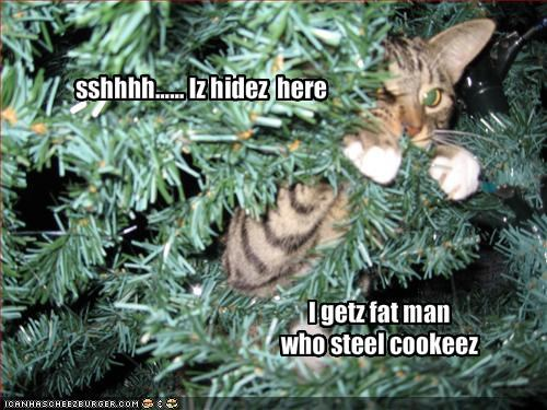 christmas cookies hiding lolcats santa shh tree - 1482265344