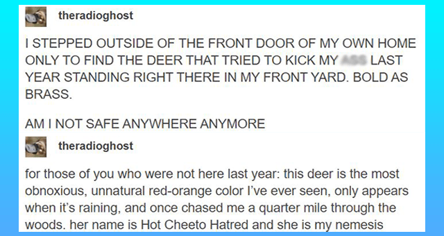 animal tumblr posts | thumbnail includes one tumblr post 'Font - theradioghost I STEPPED OUTSIDE OF THE FRONT DOOR OF MY OWN HOME ONLY TO FIND THE DEER THAT TRIED TO KICK MY ASS LAST YEAR STANDING RIGHT THERE IN MY FRONT YARD. BOLD AS BRASS. AM I NOT SAFE ANYWHERE ANYMORE theradioghost for those of you who were not here last year: this deer is the most obnoxious, unnatural red-orange color I've ever seen, only appears when it's raining, and once chased me a quarter mile through the woods. her n'