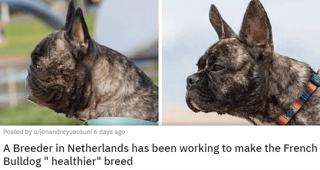"""pics of the cutest animals of the week 