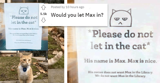 """12 images with text, cat max not allowed into library 