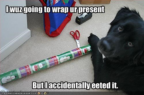 bad dog,christmas,hungry,labrador,nom nom nom,present