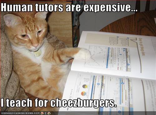 Cheezburger Image 1492207360
