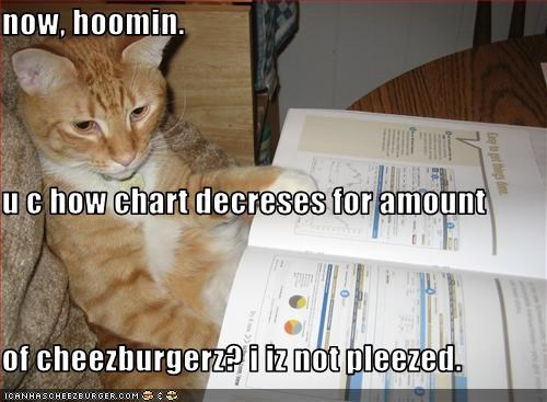 Cheezburger Image 1495397120