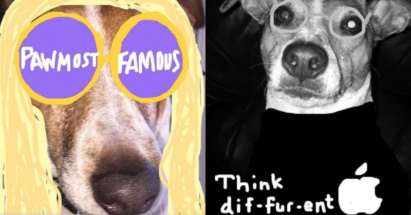 dogs snapchat drawing art pets creative pop culture funny - 1495813