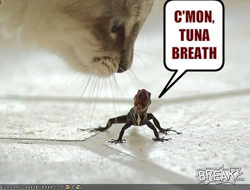 C'MON,TUNA BREATH