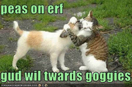 dogs hugs lolcats loldogs love peace - 1497962240