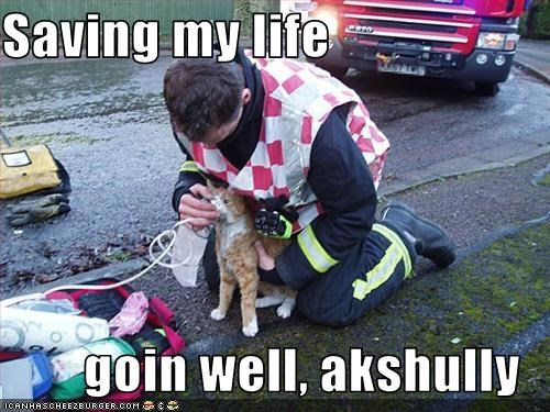 halp,rescue