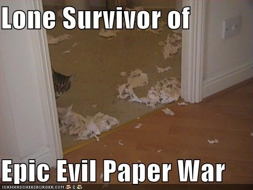 destruction,guilty,lolcats,mess,paper,war