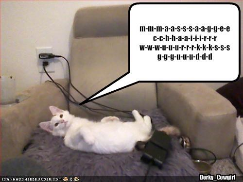 chair gud happy lolcats massage - 1499208448