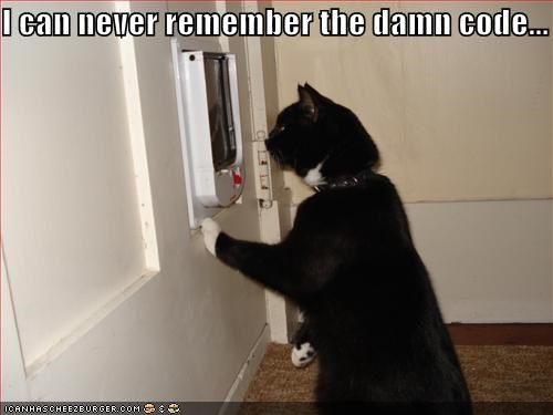 code,lolcats,remember,sneaky