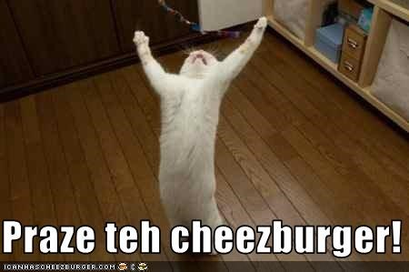 Cheezburger Image 1503630592