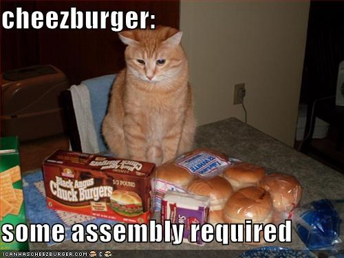 Cheezburger Image 1507809536