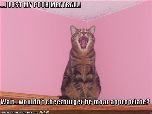 Cheezburger Image 1508306688