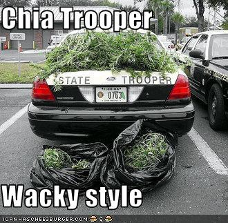 florida police - 1508419328