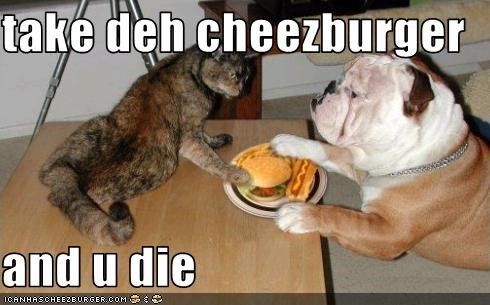 Cheezburger Image 1511864064