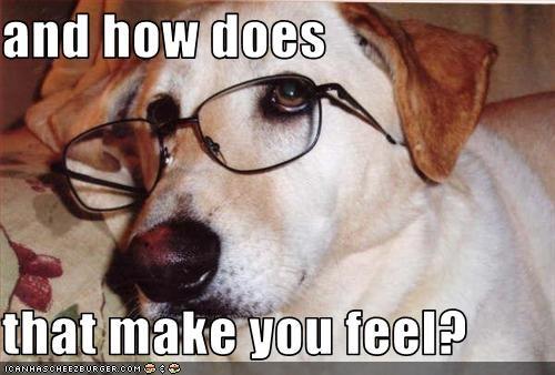 doctor feelings glasses labrador - 1515244800