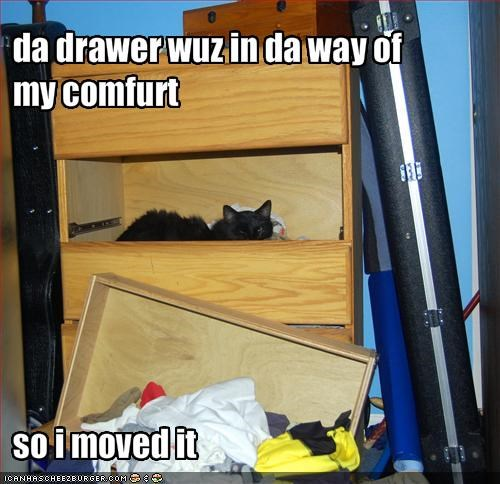 comfort drawers lolcats nap - 1516343552