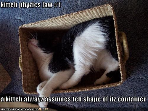 box,law,lolcats,physics,squished