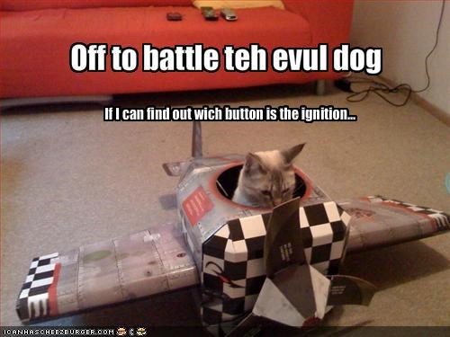 airplane Battle button dogs lolcats loldogs - 1518355712