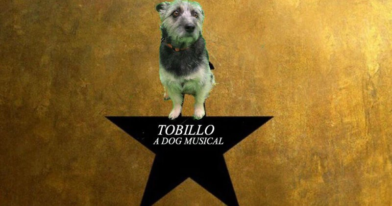 dogs twitter Lin-Manuel Miranda photoshop photoshop battle Hamilton - 1524485