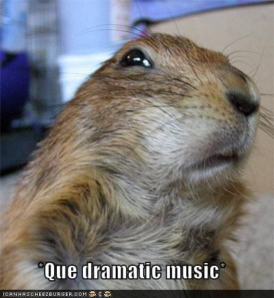 Que dramatic music* - Cheezburger - Funny Memes | Funny Pictures