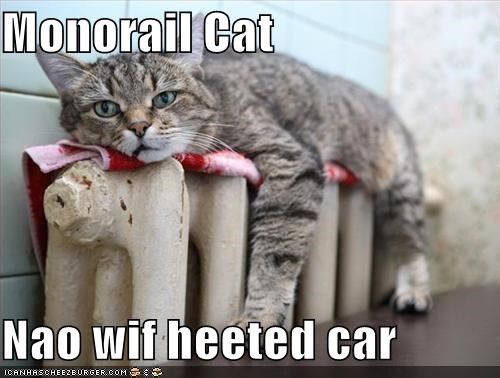 car,heater,lolcts,monorail cat,nap,warm